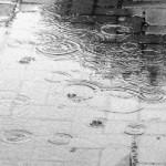 Lluvia, Román Leonardo Picón